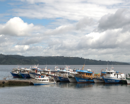 Fishing Boats at Chiloe Island, Chile